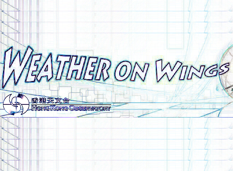 Weather On Wings (Newsletter)