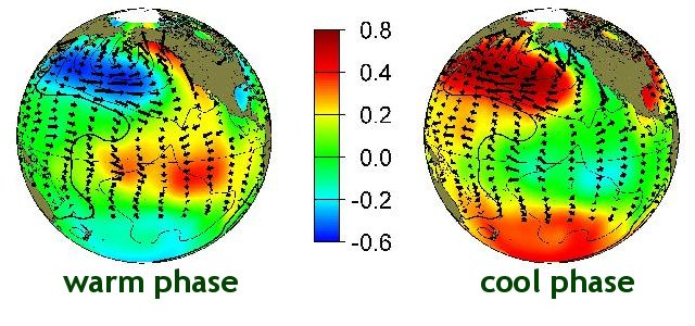typical wintertime sea surface temperature , sea level pressure and surface  wind stress  anomaly patterns during warm and cool phases of PDO
